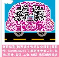 陕西城乡劳动就业传媒总编手机/微信号13709288214