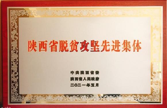 陕西省人社厅脱贫攻坚工作获省委省政府表彰